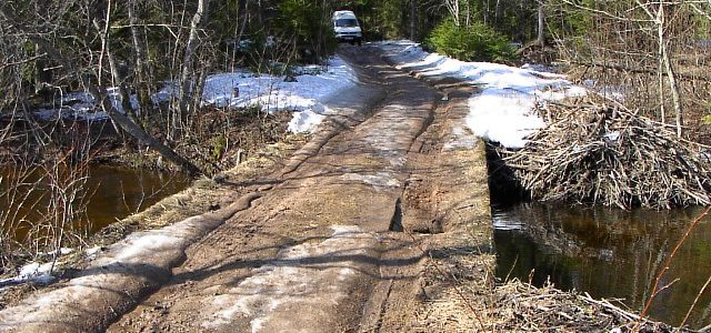 Rekonstrueerimisse minev sild ja metsatee 2003